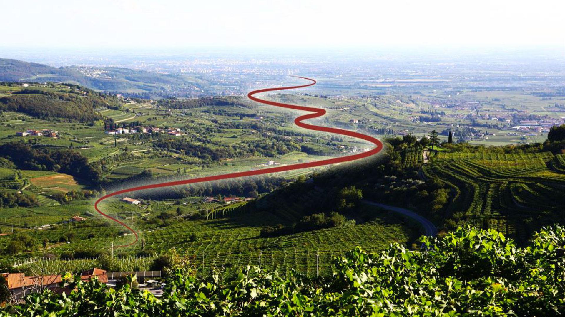 Il Cammino del Bardolino.